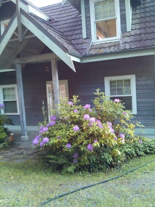 Dogwood Cottage Houten Huisje Te Huur In Salt Spring