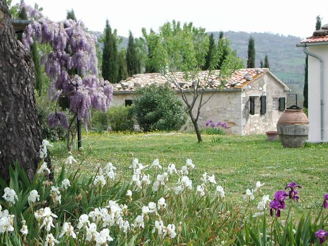 Il Forno - Agriturismo a Saturnia - Saturnia - Bed & Breakfast