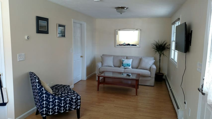 Living room/hang out area. Brand new queen sleeper sofa.