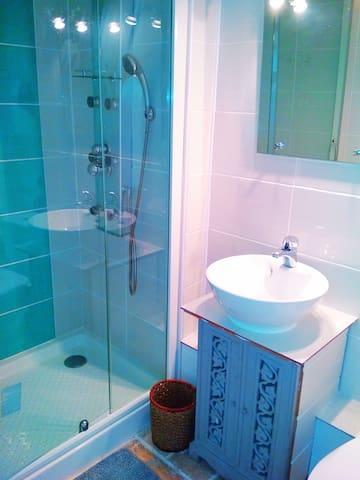 twin room ensuite shower room