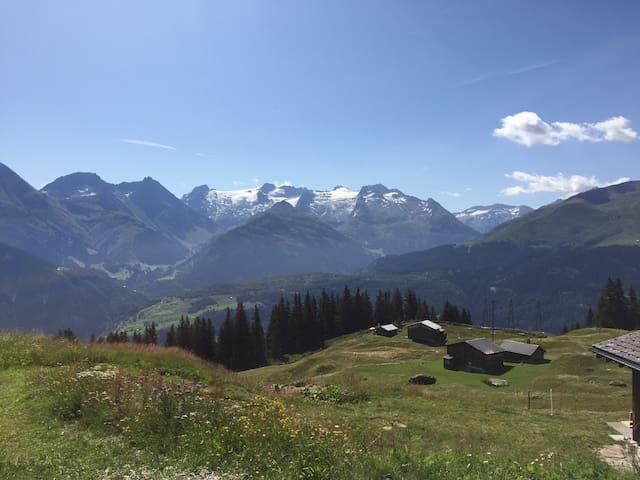 Disentis mountain view