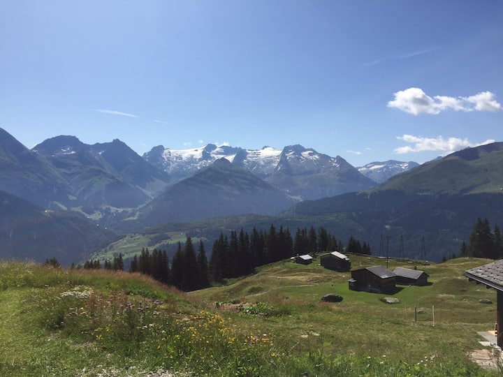 Disentis mountain view