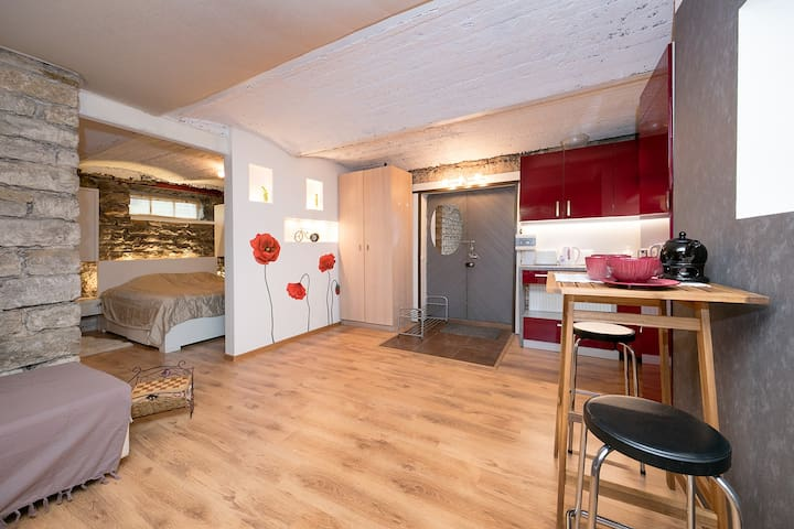 Unique apartment in trendiest area in Tallinn!