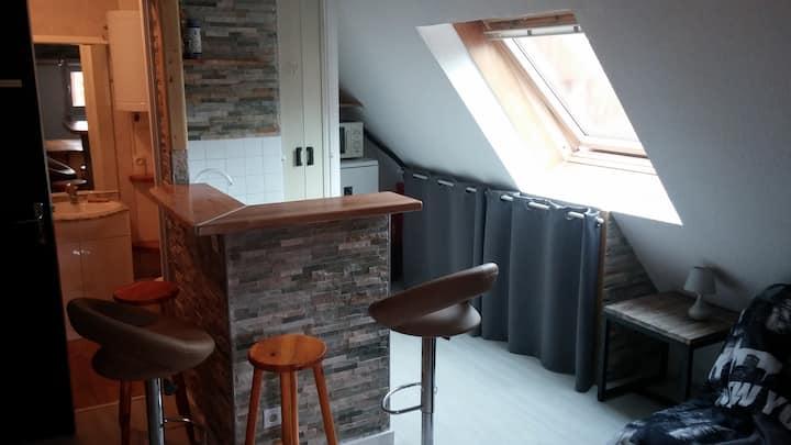 Studio montagne Les 7 Laux Le Pleynet