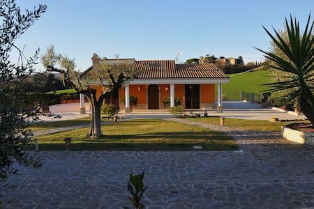 Camera Matrimoniale (ZF) - Sant'Elpidio a mare - Bed & Breakfast