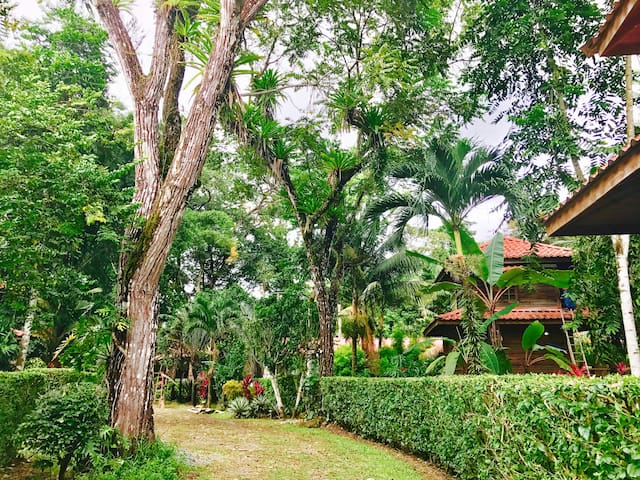 # Gyrola Boutique Hotel Tangara Azul - Provincia de Puntarenas - Leilighet