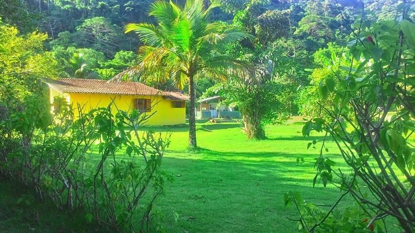 La maison jaune de Praia do Sono