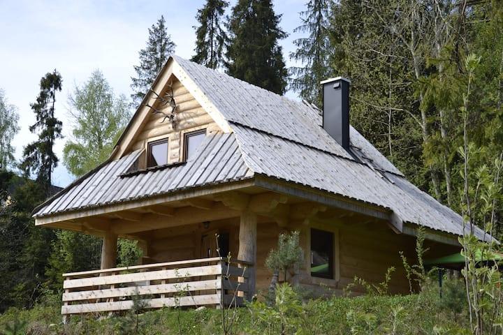 """Mountain chalet  """"SmoLenisko"""" domek w górach"""