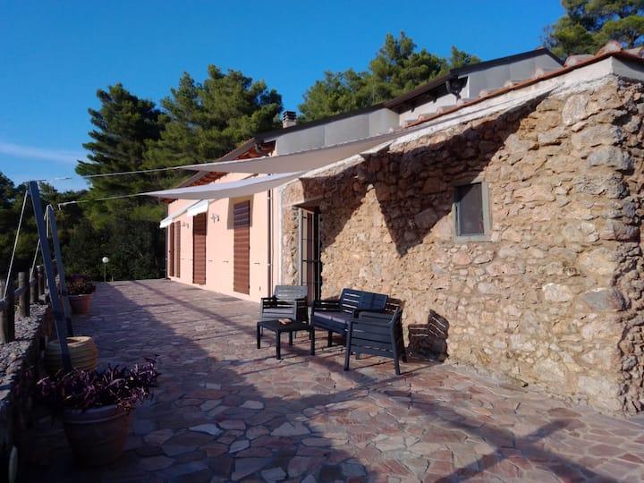 Stanza privata in Villa panoramica e tranquilla