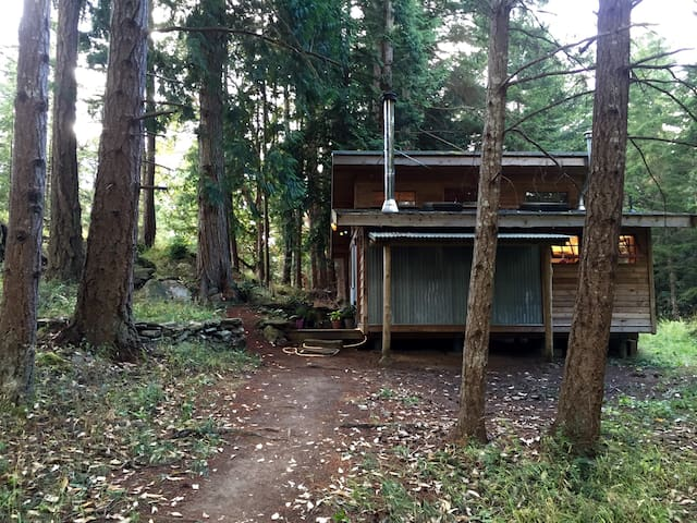 Perfect Meadow Cabin - Pender Island - Ház