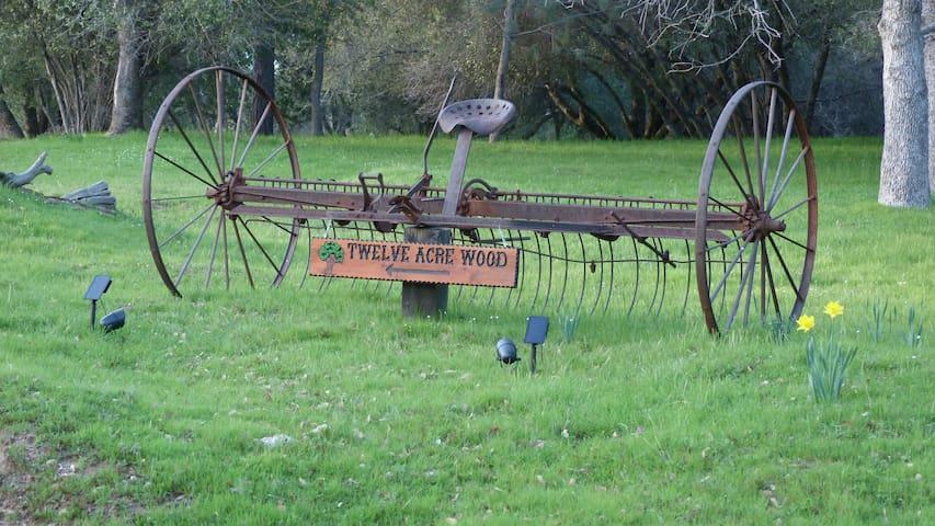 Grandpa's horse drawn hay rake from Minnesota.