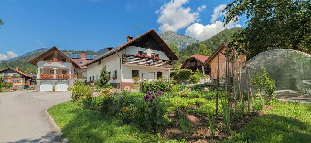 Self-catering Apt on a Working Farm - Bašelj - Pousada