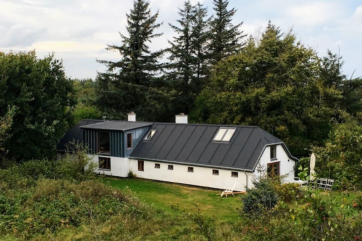 Charming renovated house with history and soul - Frøstrup - Srub