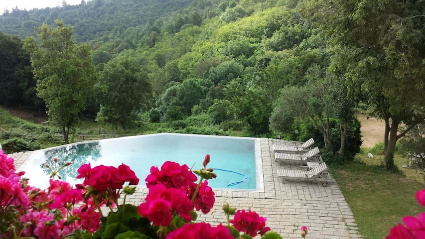 Paraiso n pleno corazón del Montseny/turismo rural - Arbúcies - Andere