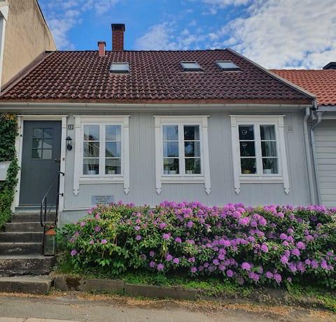 Elinor's House, Central Halden