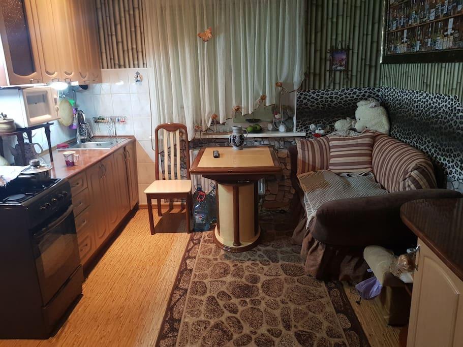 кухня, диван, газовая плита, кухонный стол (раскладной), холодильник справа от фотографа (в кадр не попал)
