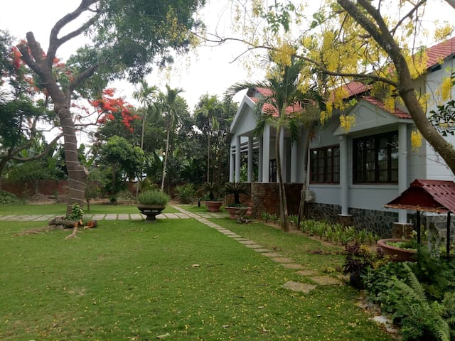 The Mango Tree Homestay