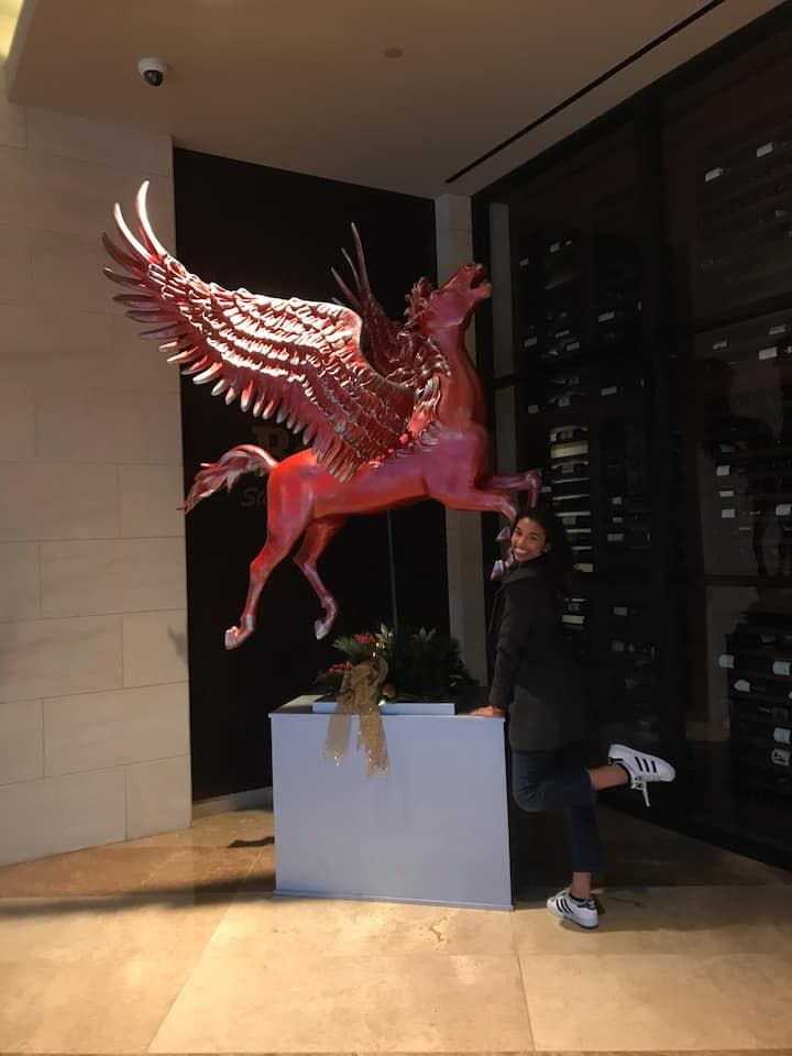 A guest finding the Red Pegasus!