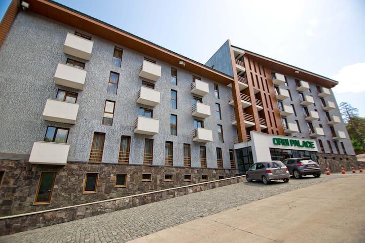 Bakuriani Orbi Palace 729