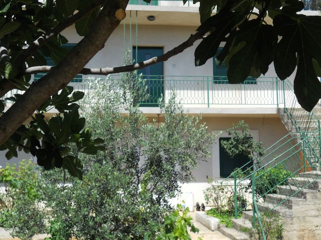 Apartment Mikulandra GUSTE - Bilice - Apartment