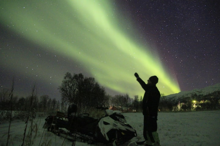 Arctic Farm camping and Northern Lights Adventures