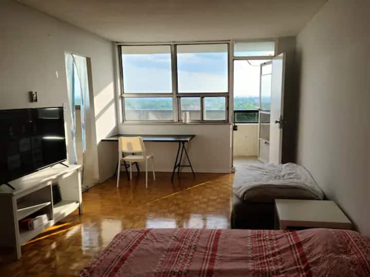 Awesome view midtown studio apartment