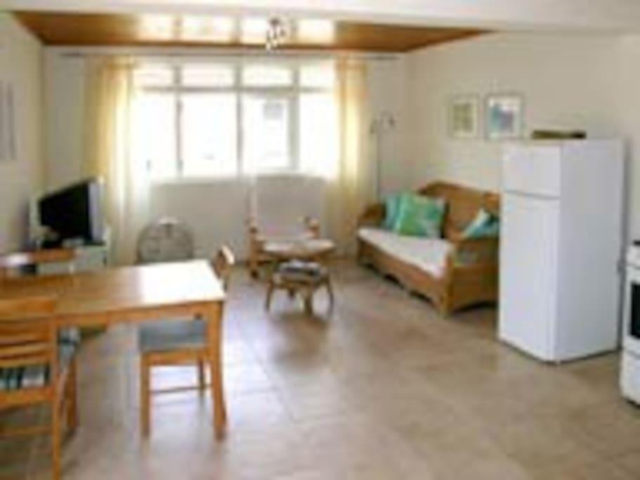 livingroom with flatscreen/ netflix