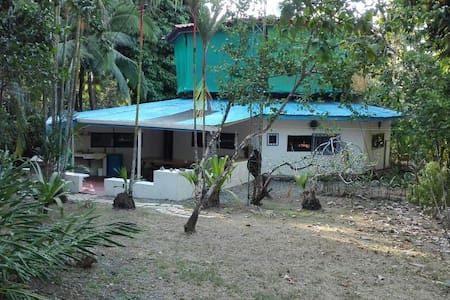 Unique octagon house in the jungle! - Pavones - Σπίτι
