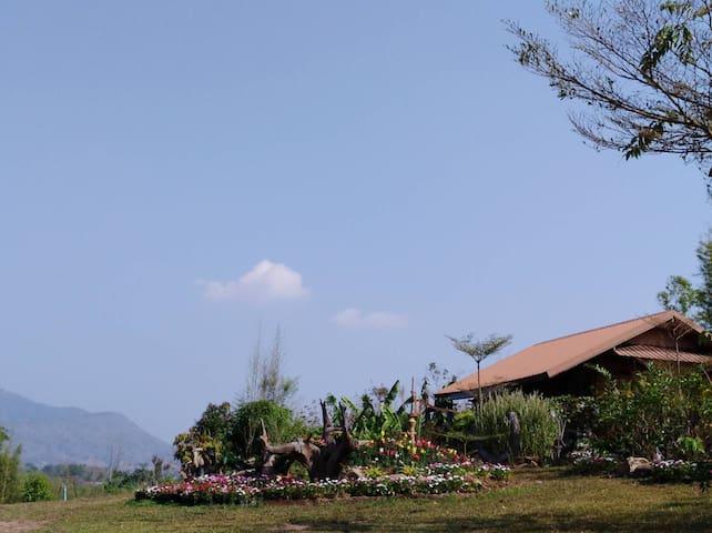 Shiitake Garden of TAGOONKHAM