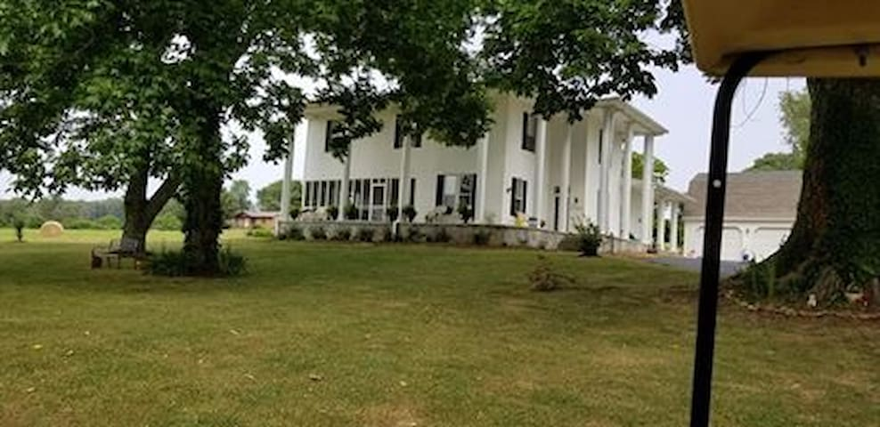 Charleston Manor-large antebellum style home