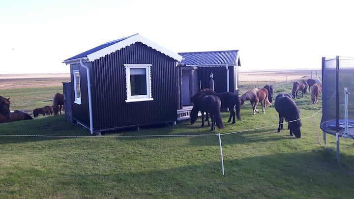 Miðás - Farm Holidays and Horse Riding- Hut 1