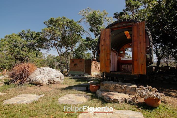 GLAMPING LA CEPA - El Tintorero - Nature lodge