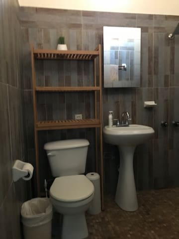 Private bathroom with shower in bedroom.  Shampoo, conditioner, body wash. Plenty of room for your personal amenities.
