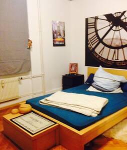 Privates Einzelzimmer - Basel - Wohnung