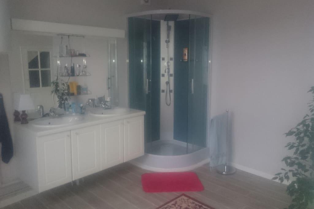 La salle de bain avec sa douche à jets