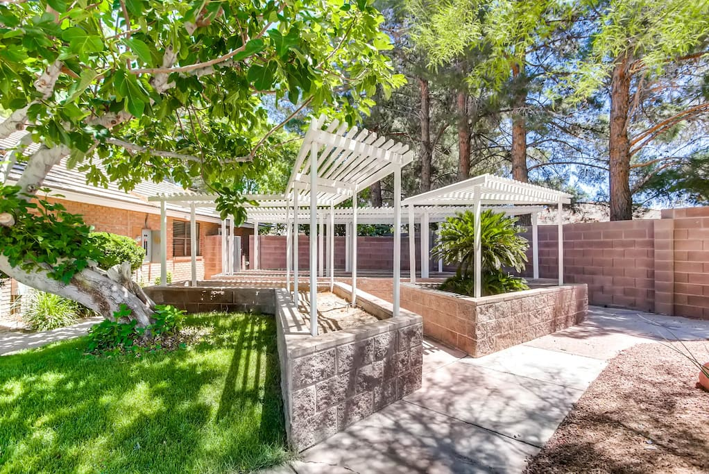Immaculate backyard BBQ grill, shaded area, games, huge swimming pool, tons of open space, and plenty of seating