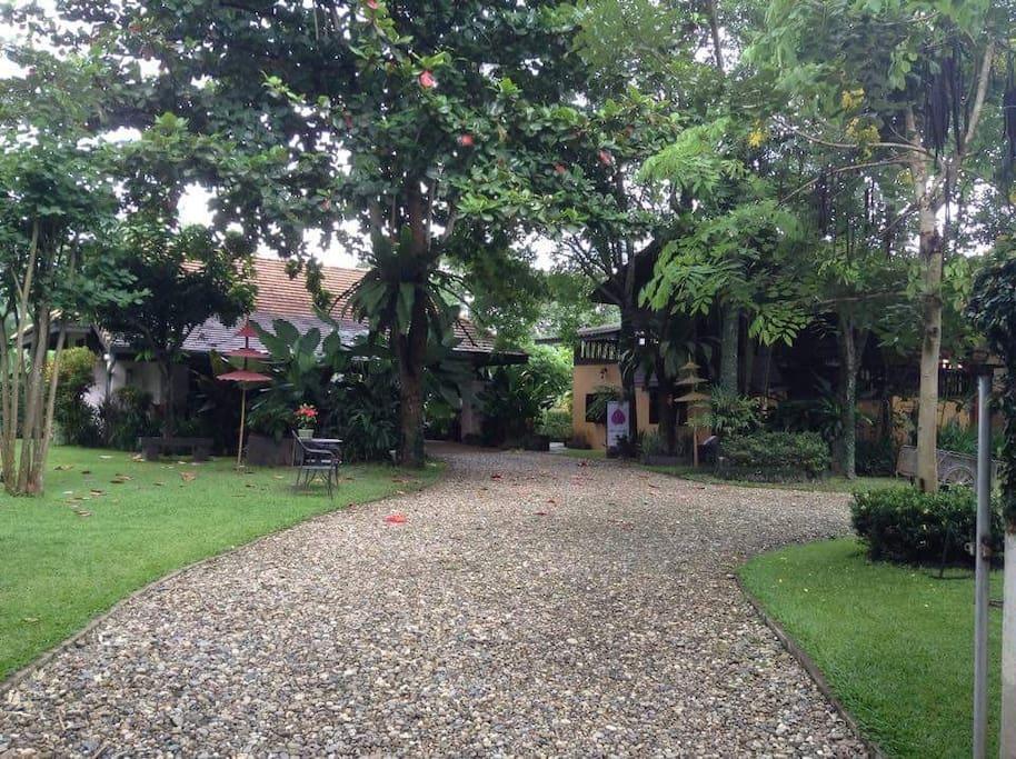 Garden flat (on left) and Teahouse.