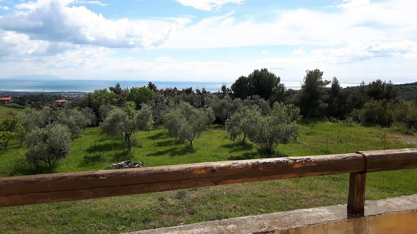 Monolocale vista mare Nella Magione - Rosignano marittimo - Departamento