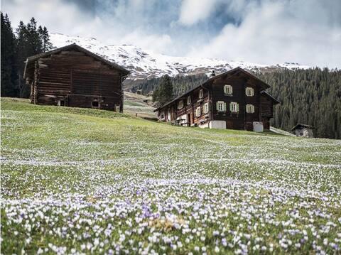 """Ferienhaus """"Maierta"""" in Safien-Thalkirch"""