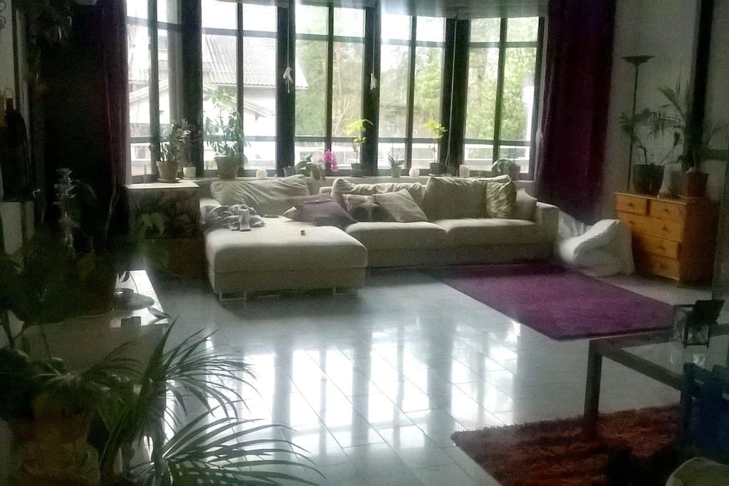 Our living room has space for yoga or other activities.