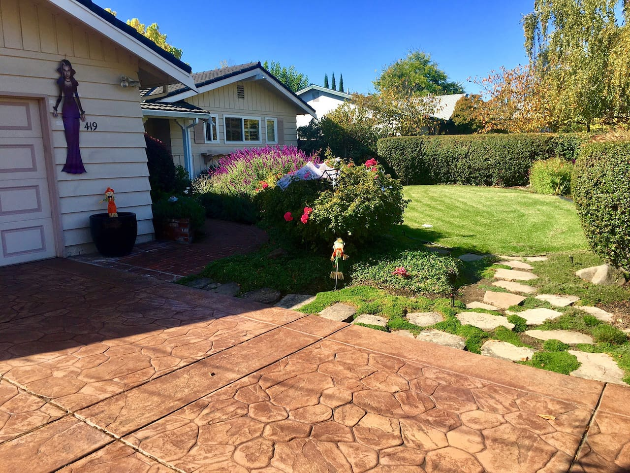 Driveway and front yard