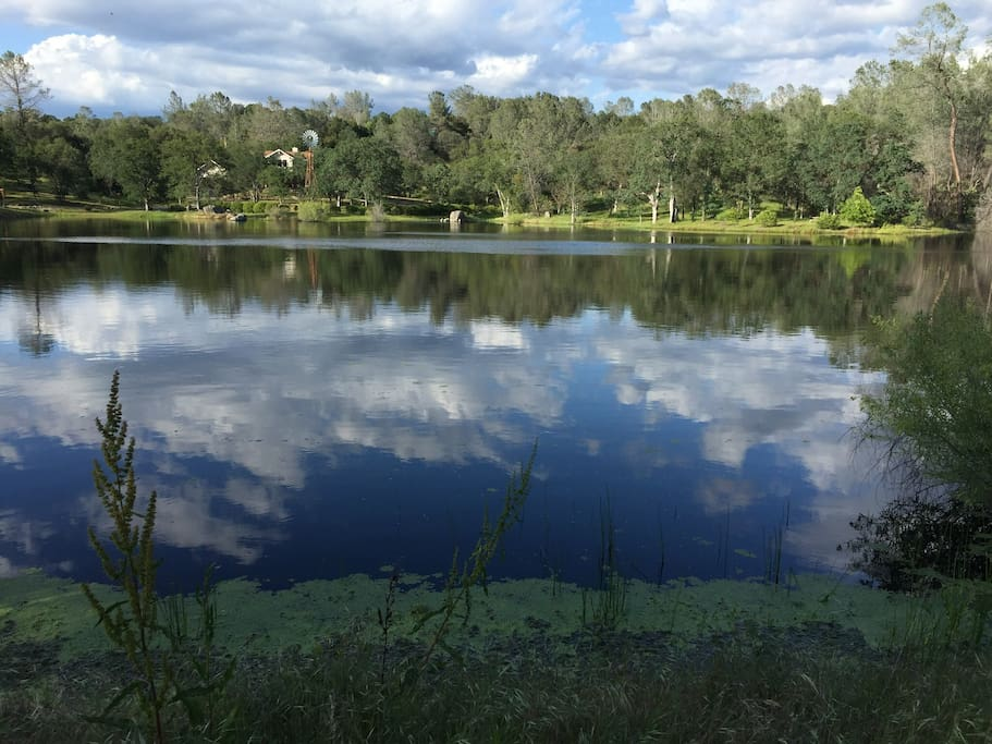 5 acre pond available seasonally stocked with bass and blue gill