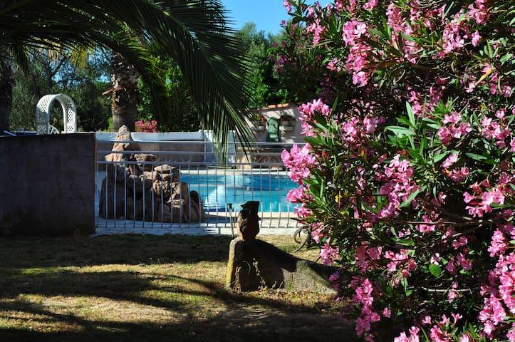 Mini villa 39m2 avec piscine à 2 kms de la mer NEP - Ventiseri - House