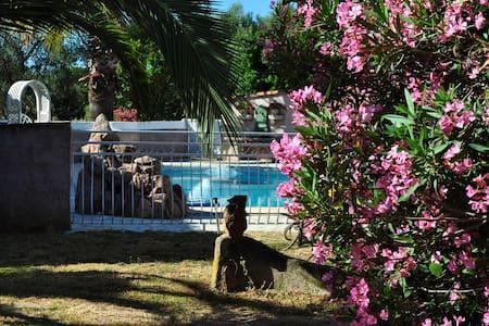 Mini villa 39m2 avec piscine à 2 kms de la mer NEP - Ventiseri - 独立屋