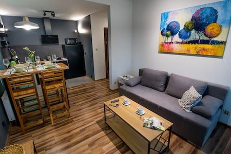 Apartment Kustronia  with garage
