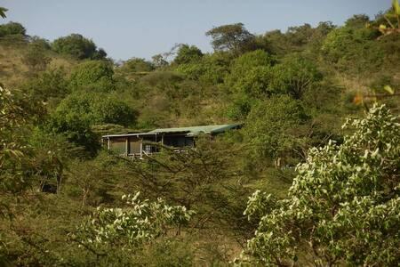 Sarambala Bush Cottage - Kajiado - House
