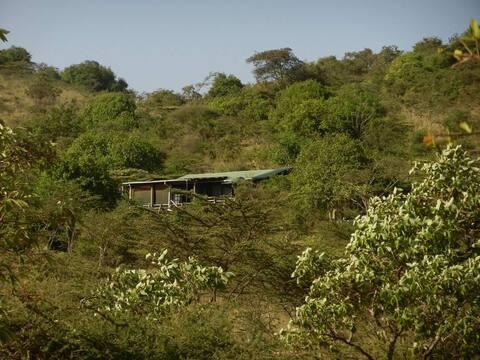 Sarambala Bush Cottage