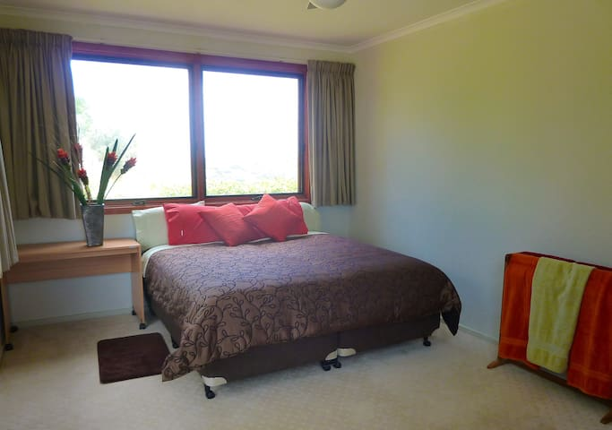 Second bedroom, two king single beds convert to a super king size bed