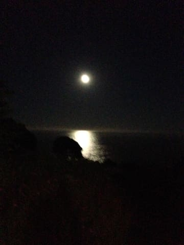 moon path over the sea at 5 am. Worth getting up to see this