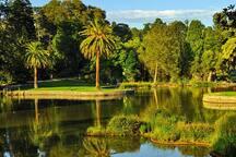 Botanic Gardens - 10 minutes Free Tram
